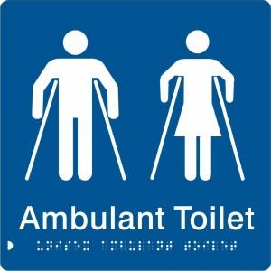 Unisex Ambulant Toilet